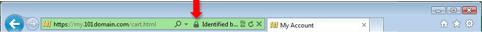 Зеленая панель с иконкой замка в Internet Explorer 9 для Windows