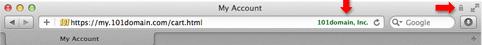 Зеленый текст с иконкой замка в Safari для Mac