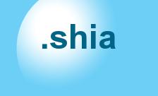 Купить домен .shia