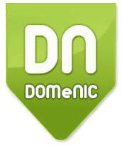 DOMeNIC аккредитованный регистратор